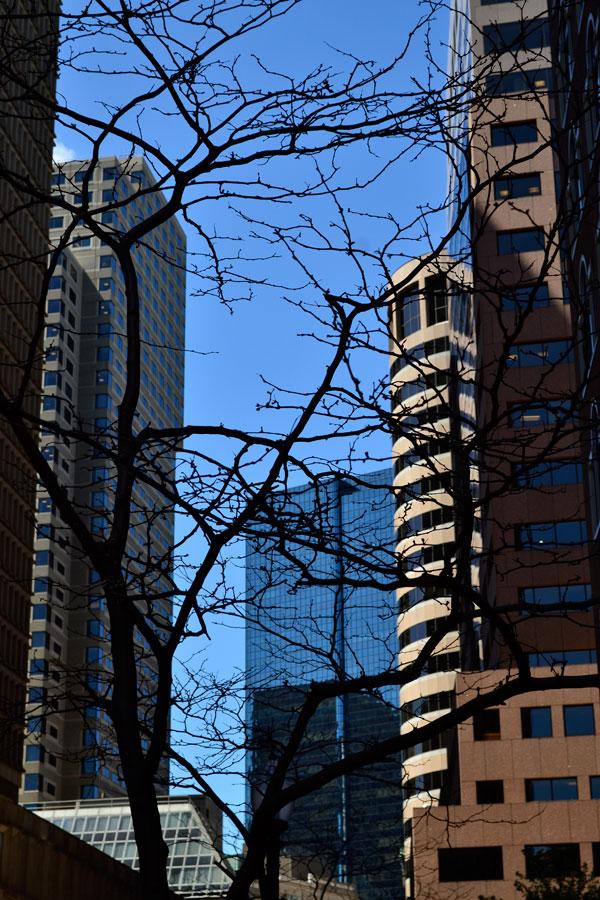 boston_0362